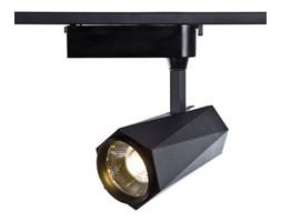 Lampy Na Szynie Pomysły Inspiracje Z Homebook