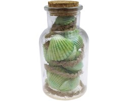 Muszelki w butelce Zielone