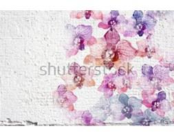 27ecf44076926b Fototapeta Abstrakcjonistyczny biały grunge ściany stiuku tło. Ścienna  sztukateryjna tekstura z kolorowymi akwarela kwiatami storczykowymi