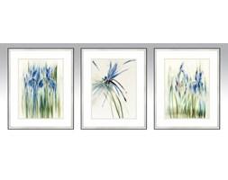 Obraz Herbarium 42x538 Cm Wzór Nr 3 Obrazy Zdjęcia Pomysły