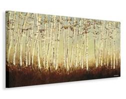 Silver Birch Trees - Obraz na płótnie