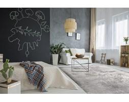 Dywany Komfort Wyposażenie Wnętrz Homebook