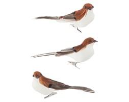 Ptaki na spince, 3 szt, biało-brązowe, J-LINE