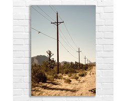 Pustynia USA fotoplakat 6618 - Buy Design