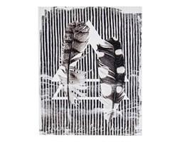 Obraz Feather II 40x50 cm