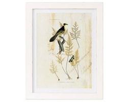 Obraz Bird 35x45 cm