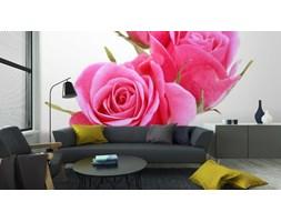 Fototapeta Różowa Róża Bukiet Kwiatów Na Białym Tle Wycięcia