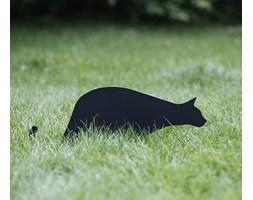 Koty na płoty Nierdzewny Bonifacy