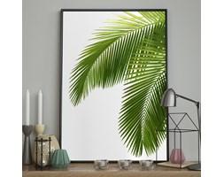 DecoKing - Plakat ścienny - Bahamas