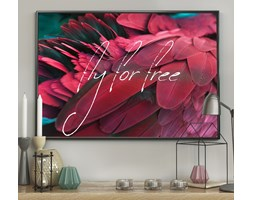 DecoKing - Plakat ścienny - Feathers – Red - Free