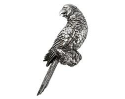 Lene Bjerre- papuga