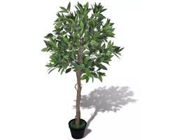 Doniczki Do Drzewka Bonsai Pomysły Inspiracje Z Homebook