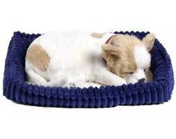 Perfect Petzzz Zabawkowy pies Chihuahua 96262