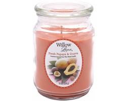 Świeca zapachowa Candle-lite sojowa duża 538 g - Fresh Papaya & Guava