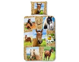 Good Morning Zestaw pościeli 5752-P HORSES 135 x 200 cm, wielokolorowy