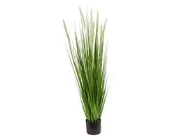 Sztuczna trawa roślina w doniczce do salonu biura Trawa Dogtail-2 120 cm TR-DOG2-120-I