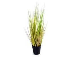 Sztuczna trawa roślina w doniczce do salonu biura Trawa Onion 53 cm - I TR-0NI-O53-I