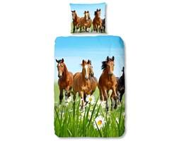 Good Morning Zestaw pościeli 5316-P HORSES, 135 x 200 cm, kolorowy