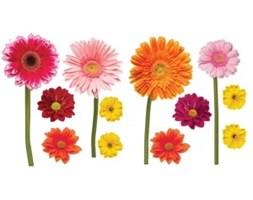 Naklejki Na Rower Kwiaty Pomysly Inspiracje Z Homebook