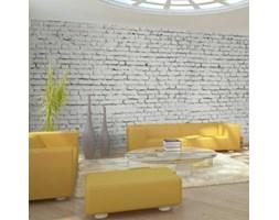 Fototapeta XXL - Ściana z białej surowej cegły 100705-4