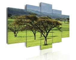 Obraz Zielona Afryka 030213-8