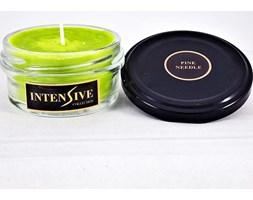 INTENSIVE COLLECTION Vegetable Wax Candle A1 naturalna świeca zapachowa w słoiku typu daylight - Pine Needle