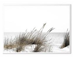 WYDMY I MORZE obraz w białej ramie, 53x73 cm