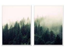 LAS WE MGLE komplet dwóch obrazów w białej ramie, 53x73 cm x 2