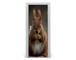 Naklejka samoprzylepna na drzwi ścianę Wiewiórka