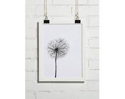 Plakat roślinny
