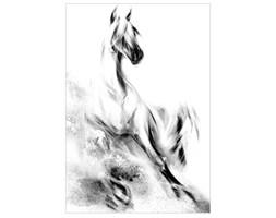 Pełen energii obraz, dynamiczny motyw - Koń Arabski, Seria Wiedeń.