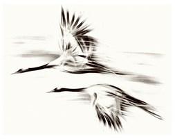 Czarno-biały obraz do salonu - Żurawie 2 PREMIUM, Seria Shanghai.