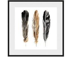 Obraz Three Feathers