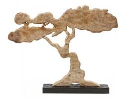 Dekoracja Tree Karoo