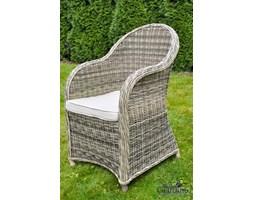 Fotele Rattanowe Wyposażenie Wnętrz Homebook