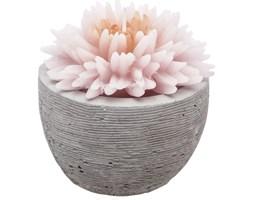Świeca  dekoracyjna, jasnoróżowy kwiat w cementowej donicy, 100g