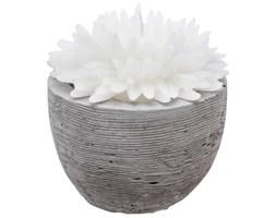 Świeca  dekoracyjna, biały kwiat w cementowej donicy, 100g