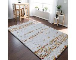 Dywany Homecarpets Wyposażenie Wnętrz Homebook