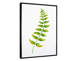 Plakat w ramie Leaves 10