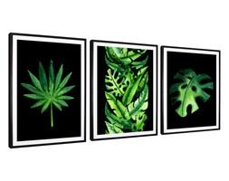 Tryptyk Leaves 2 - Plakaty w ramach (3x 30x40cm)