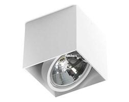 Azzardo AZ1359 - Plafon ALEX 1xG53/50W/230V/12V