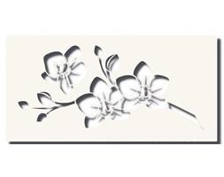 Obraz VIDAR Biały 120x60 cm