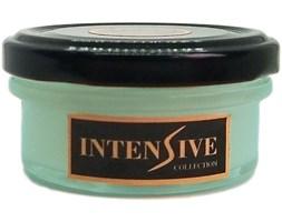 INTENSIVE COLLECTION Vegetable Wax Candle A1 naturalna świeca zapachowa w słoiku typu daylight - Frozen