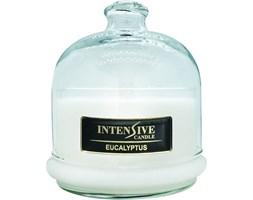 INTENSIVE COLLECTION 100% Soy Wax Premium Candle B2 Jar świeca zapachowa w szkle z kloszem 100% wosk sojowy - Eucalyptus