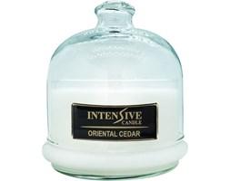 INTENSIVE COLLECTION 100% Soy Wax Premium Candle B2 Jar świeca zapachowa w szkle z kloszem 100% wosk sojowy - Oriental Cedar