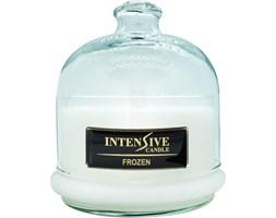 INTENSIVE COLLECTION 100% Soy Wax Premium Candle B2 Jar świeca zapachowa w szkle z kloszem 100% wosk sojowy - Frozen