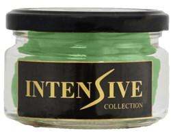 INTENSIVE COLLECTION Scented Wax In Jar S3 wosk zapachowy w słoiku - Eucalyptus