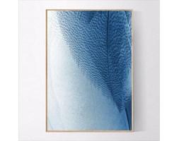 Plakat Niebieskie pióra
