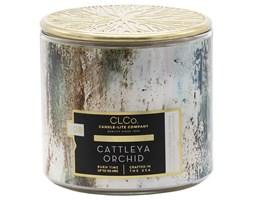 Candle-lite CLCo świeca zapachowa drewniany knot 396 g - Cattleya Orchid