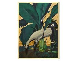 PTAKI W DŻUNGLI II obraz w złotej ramie, 53x73 cm
